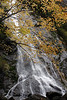 Rocky Brook Creek Falls on Dosewallips Hood Canal : This Waterfall has a lot of special meaning to me, It was one of the last gifts from my Mom carol Fagan, it is what made it possible to meet my Beautiful Wife Kimberly and it is the final resting place where my Mom wished to be.